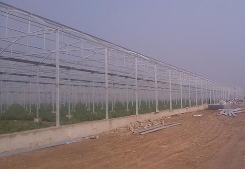 世界zui大的单体连栋温室