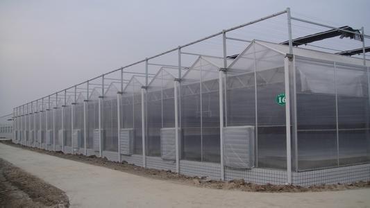 PC阳光板温室造价