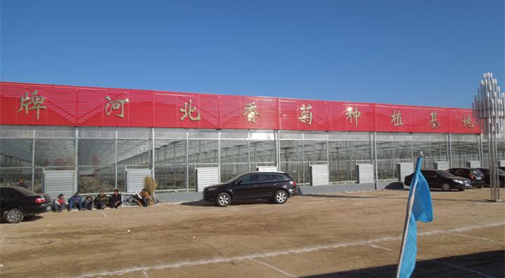 廊坊远村农业香菊生产基地