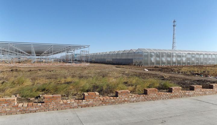张家口绿世界农业科技有限公司阳光板温室